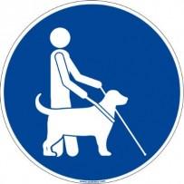 Signalétique accessibilité sol - Chien guide d'aveugle